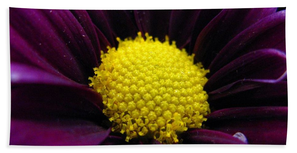 Flower Bath Sheet featuring the photograph Purple Jewel by Rhonda Barrett