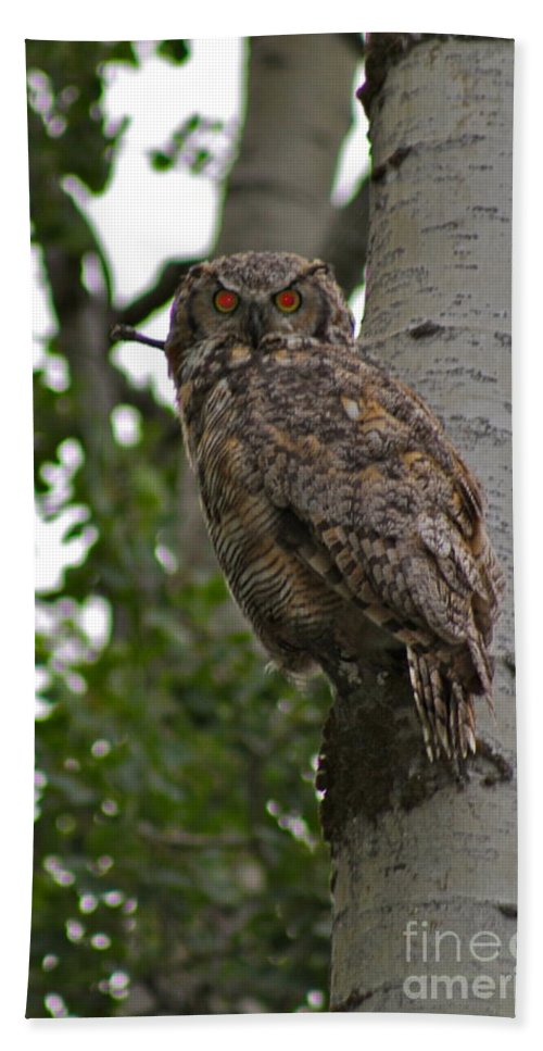 Owl Bath Sheet featuring the photograph Red Eye by Rick Monyahan
