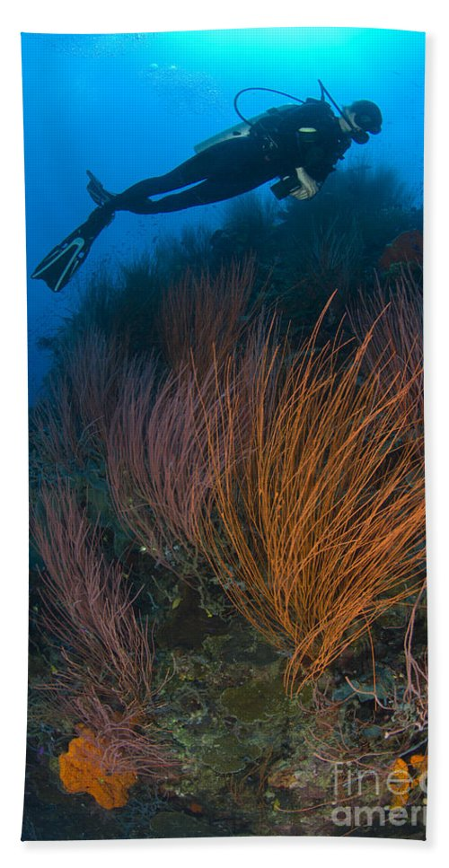 Anthozoa Bath Sheet featuring the photograph Red Whip Fan Coral With Diver, Papua by Steve Jones