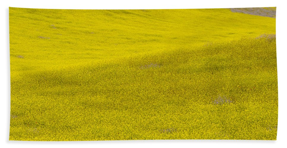 Flower Hand Towel featuring the photograph Spring In Spain by Guido Montanes Castillo