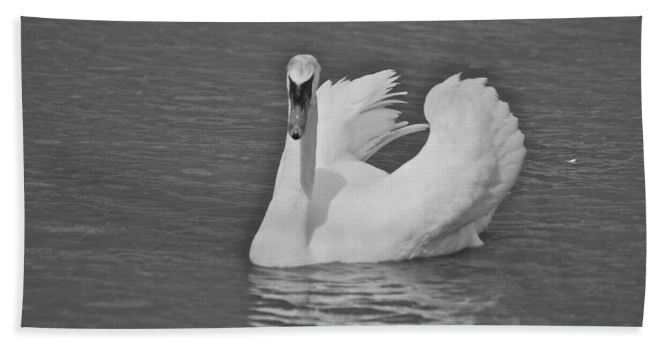 Animal Hand Towel featuring the photograph Swan by Michael Peychich
