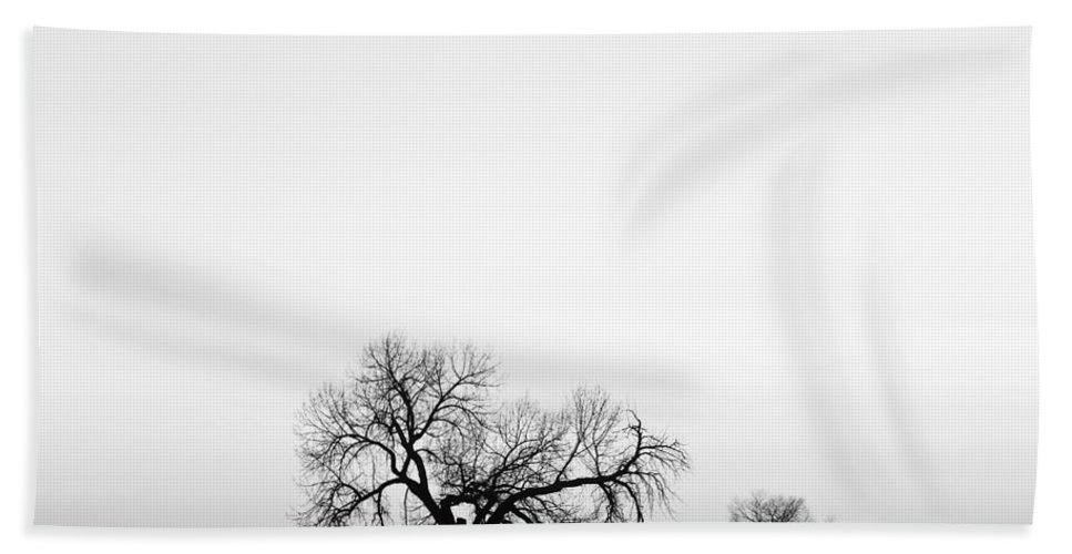 Three Bath Sheet featuring the photograph Tree Harmony Black And White by James BO Insogna