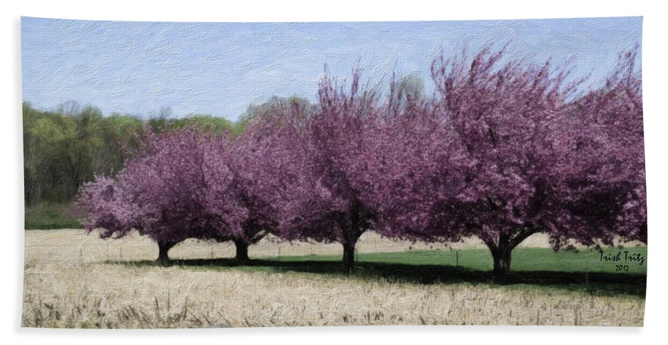Tree Hand Towel featuring the photograph Trees On Warwick by Trish Tritz