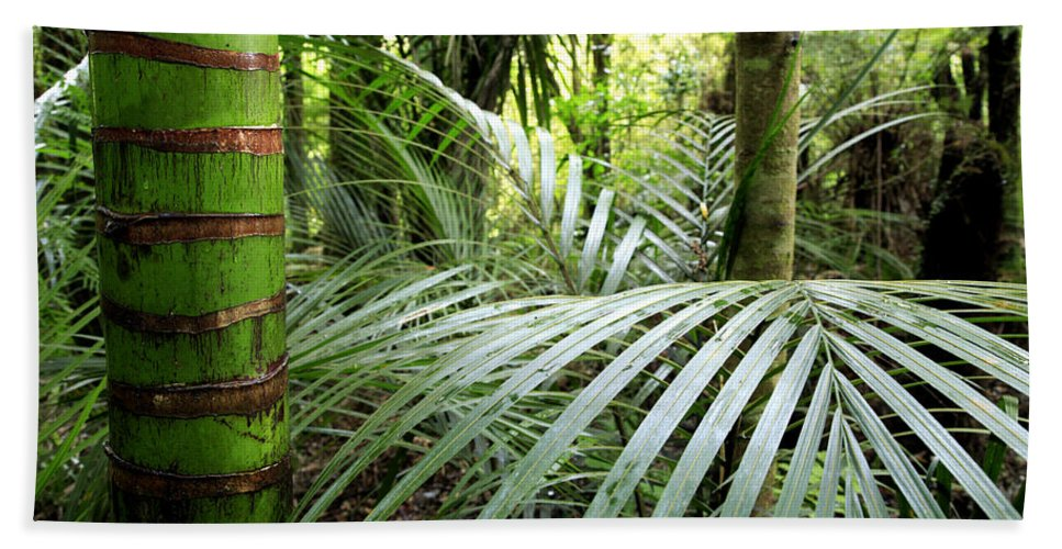 Environment Bath Towel featuring the photograph Tropical Jungle by Les Cunliffe