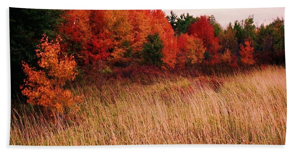 Autumn Bath Sheet featuring the photograph Vermont Autumn by John Scates