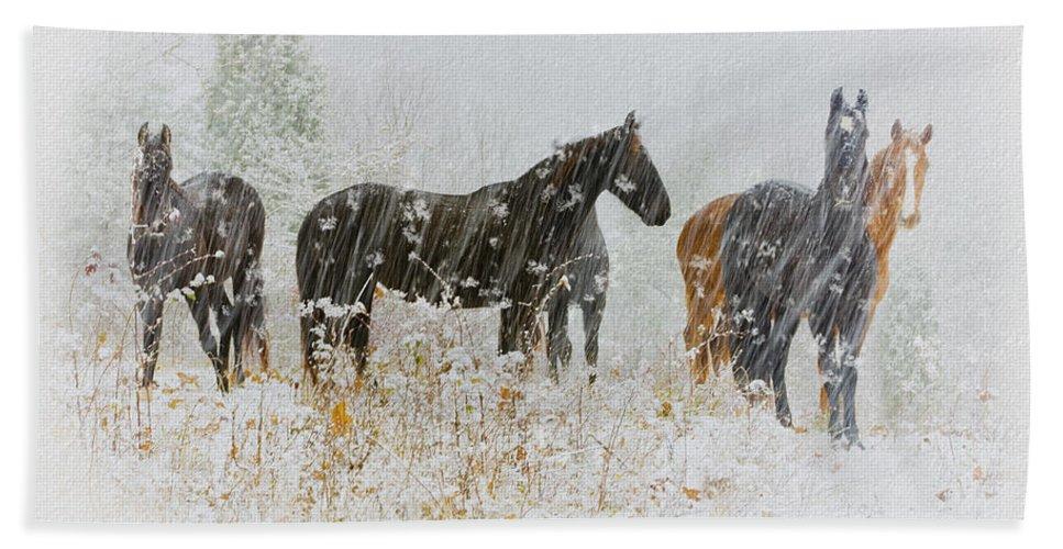Ron Jones Bath Sheet featuring the photograph Winter Horses by Ron Jones
