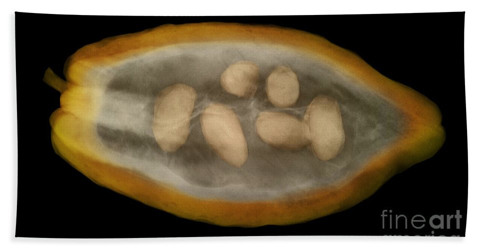 Nature Hand Towel featuring the photograph X-ray Of A Cocoa Pod by Ted Kinsman