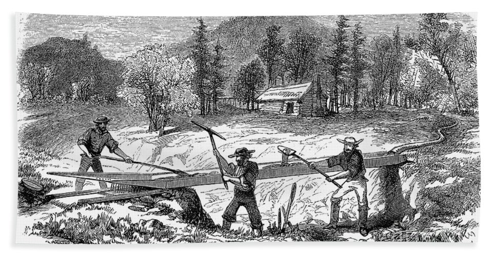 1850s Bath Towel featuring the photograph California Gold Rush by Granger