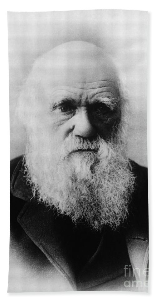 Science Hand Towel featuring the photograph Charles Robert Darwin, English by Science Source