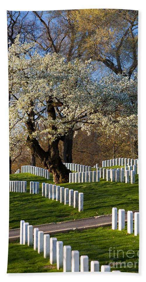 Blossoms Hand Towel featuring the photograph Arlington National Cemetary by Brian Jannsen