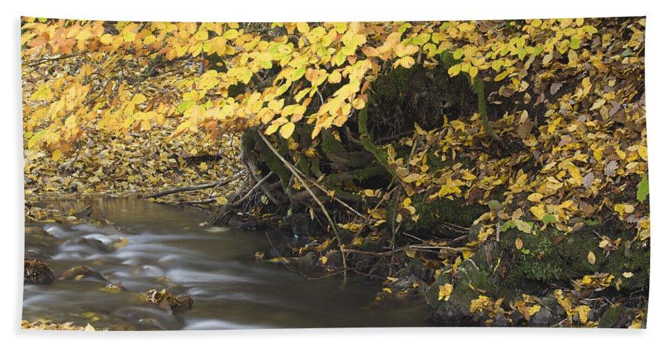 Autumn Bath Sheet featuring the photograph Autumn Flow by Ian Middleton