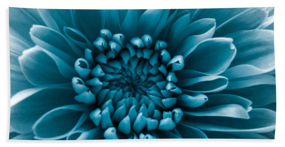 Blue Flower Bath Sheet featuring the photograph Blue Flower by Dawn OConnor