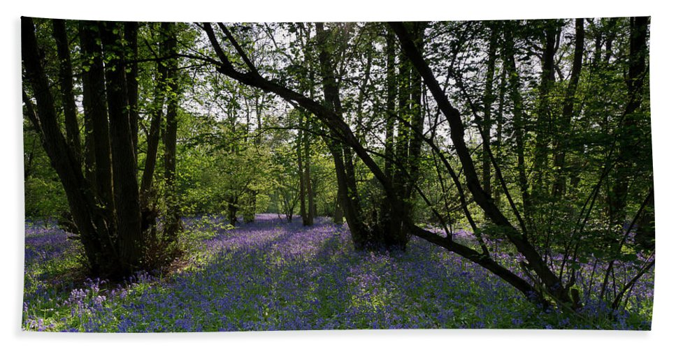 Bluebells Hand Towel featuring the photograph Bluebell Woods by Gary Eason