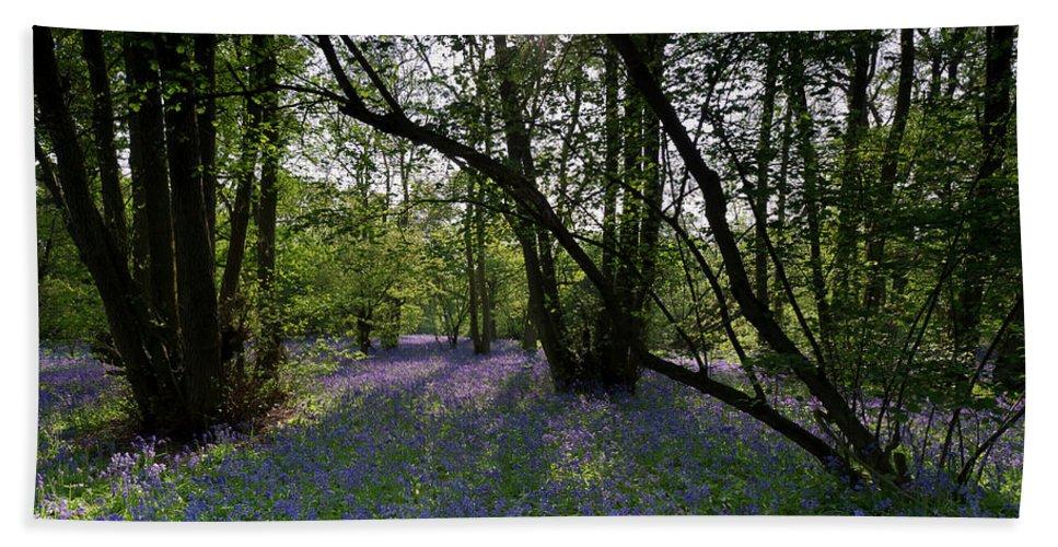 Bluebells Bath Sheet featuring the photograph Bluebell Woods by Gary Eason