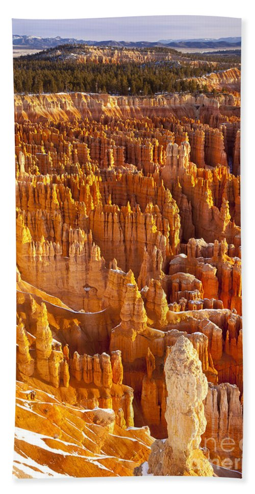 America Hand Towel featuring the photograph Bryce Canyon by Brian Jannsen