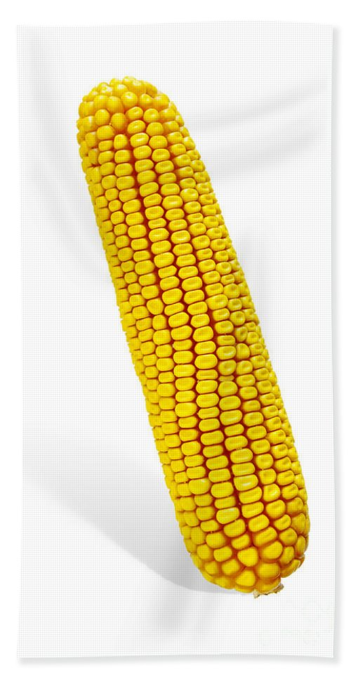 Agriculture Hand Towel featuring the photograph Corn Cob by Carlos Caetano
