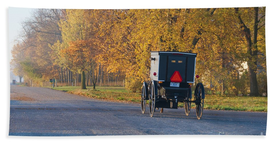 Amish Buggy Hand Towel featuring the photograph Fall Buggy by David Arment