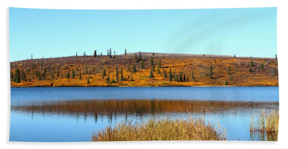 Doug Lloyd Hand Towel featuring the photograph Fall Colors by Doug Lloyd