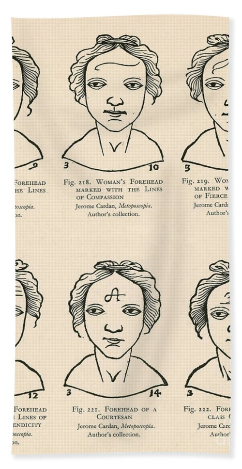Physiognomy Hand Towel featuring the photograph Physiognomy by Science Source