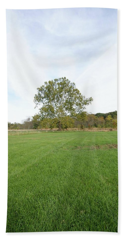 Field Bath Sheet featuring the photograph Tree by Heidi Poulin