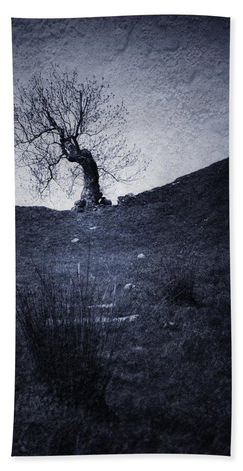 Afraid Hand Towel featuring the digital art Tree by Svetlana Sewell