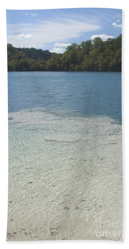 Reef Hand Towel featuring the Freshwater Reef by Ted Kinsman