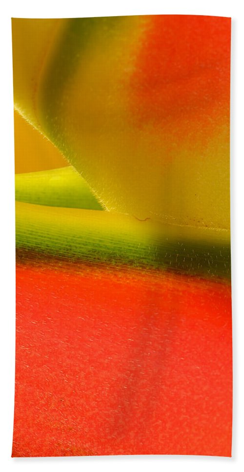 Flowers Bath Sheet featuring the photograph Photograph Of A Lobster Claws Heliconia by Perla Copernik