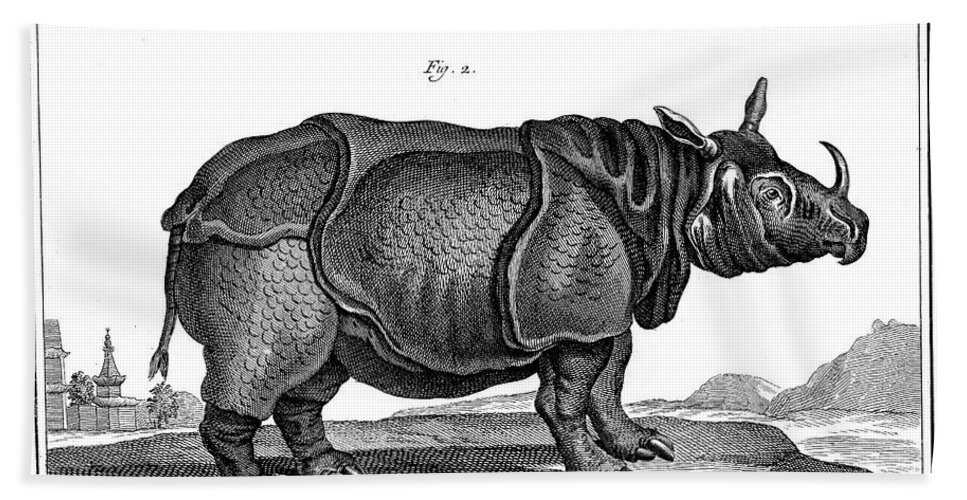 18th Century Hand Towel featuring the photograph Rhinoceros by Granger