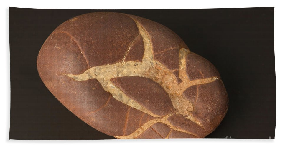 Rock Hand Towel featuring the Septarian Nodule by Ted Kinsman