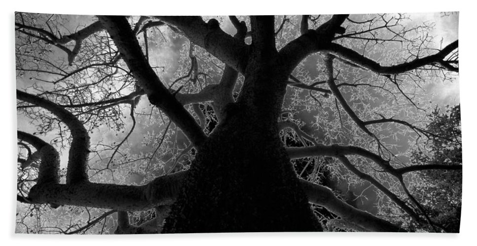 Fine Art Photography Bath Sheet featuring the photograph Tree Of Thorns by David Lee Thompson