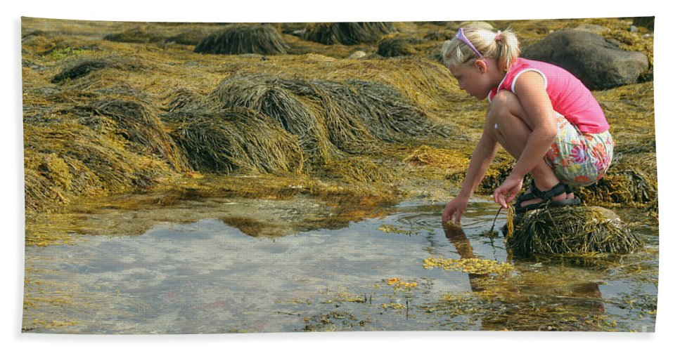People Hand Towel featuring the photograph Young Girl Exploring A Maine Tidepool by Ted Kinsman