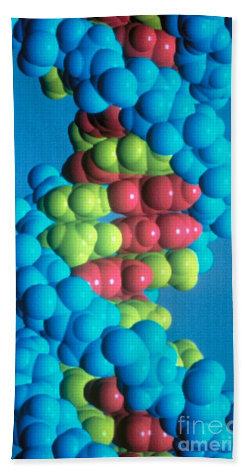 Biology Hand Towel featuring the photograph Dna by Science Source