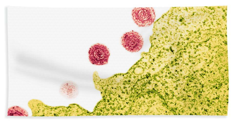 Tem Hand Towel featuring the photograph Human Herpes Virus-6 by Science Source