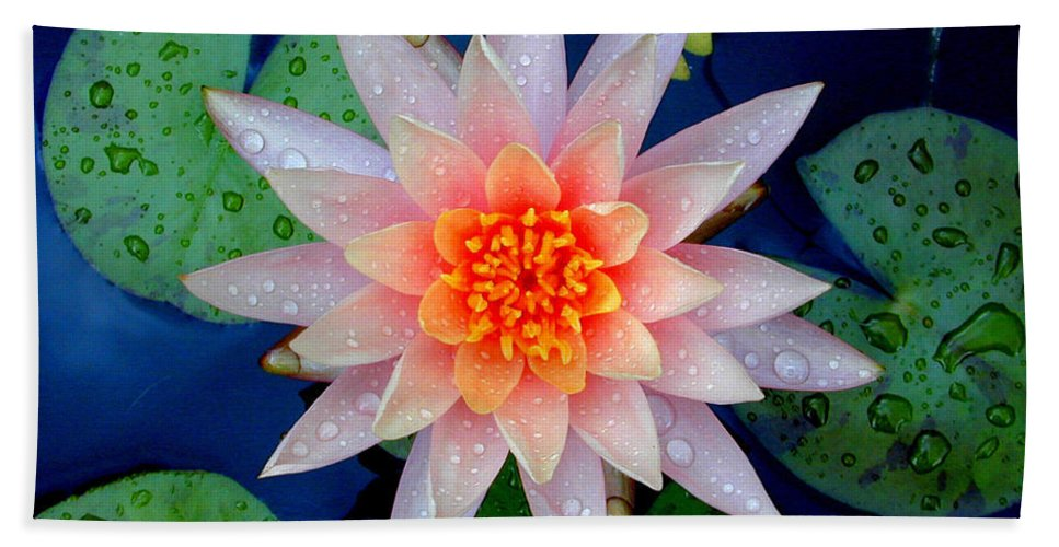 Floral Bath Sheet featuring the photograph Water Lily by Mark Gilman