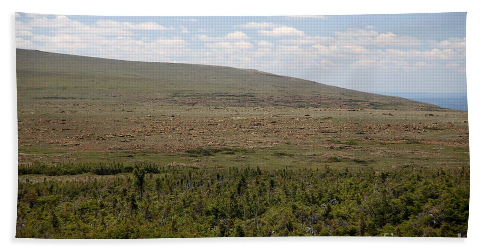 Alpine Tundra Hand Towel featuring the photograph Alpine Tundra by Ted Kinsman