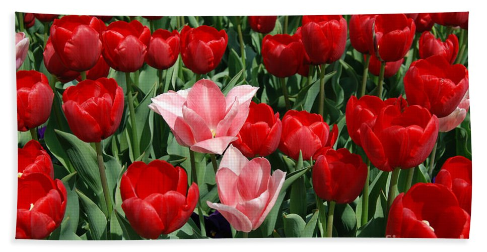 Pink Bath Sheet featuring the digital art A Field Of Tulips Series 3 by Eva Kaufman