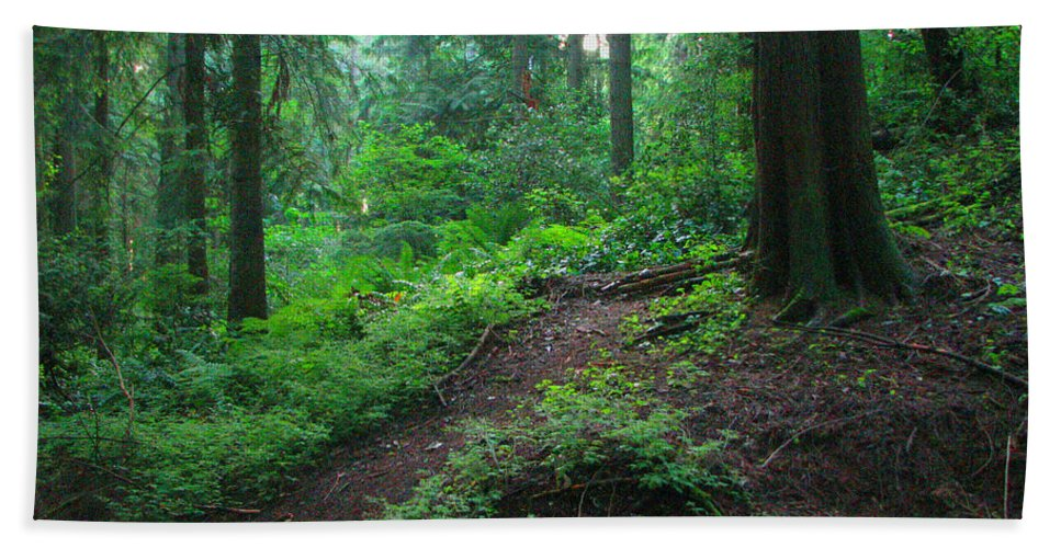 Woods Hand Towel featuring the photograph A Forest Green by Kathleen Grace
