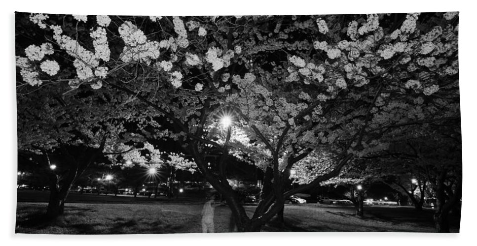 Ghost Hand Towel featuring the photograph A Ghost In The Cherry Blossoms by Shirley Tinkham