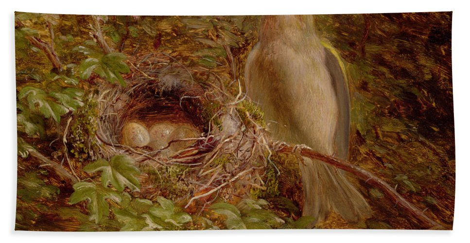 A Greenfinch At Its Nest Bath Sheet featuring the painting A Greenfinch At Its Nest by William Hughes