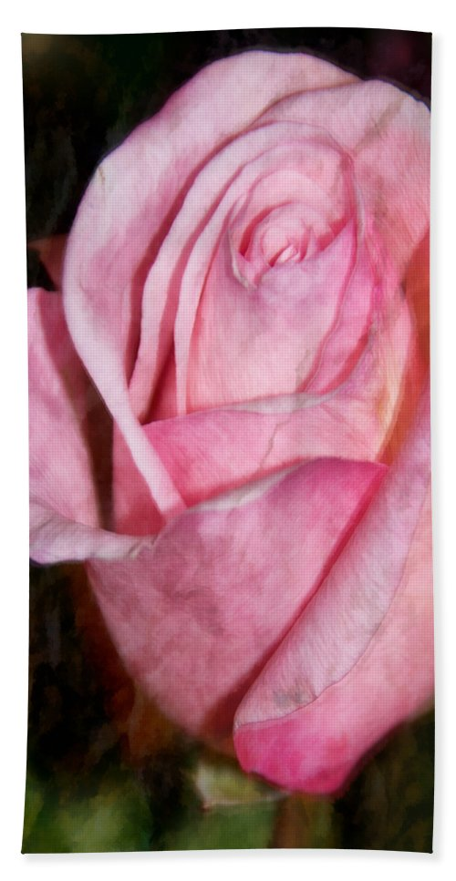 Pink Hand Towel featuring the photograph A Kiss By A Rose by Angelina Tamez