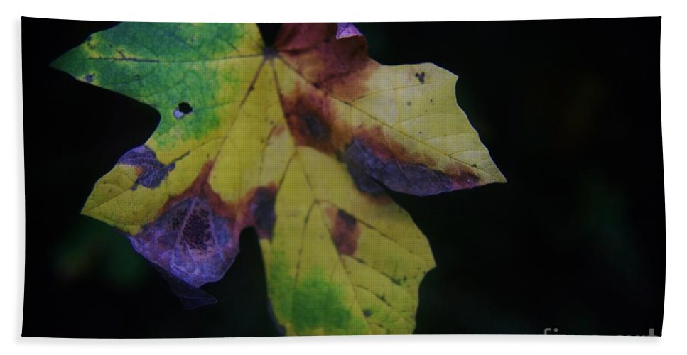 Leaves Bath Sheet featuring the photograph A Leaf Left Black And Blue by Jeff Swan
