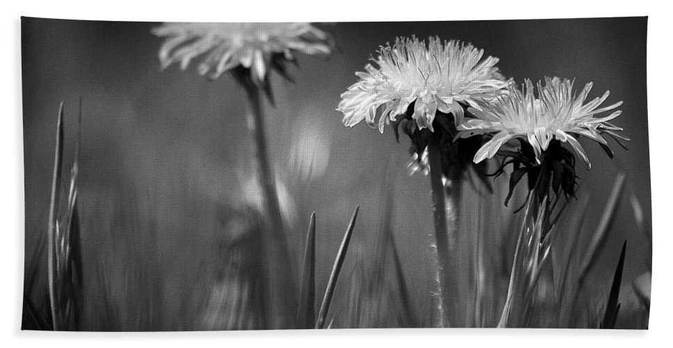 Flower Bath Sheet featuring the photograph A Moment In Time by Vicki Pelham