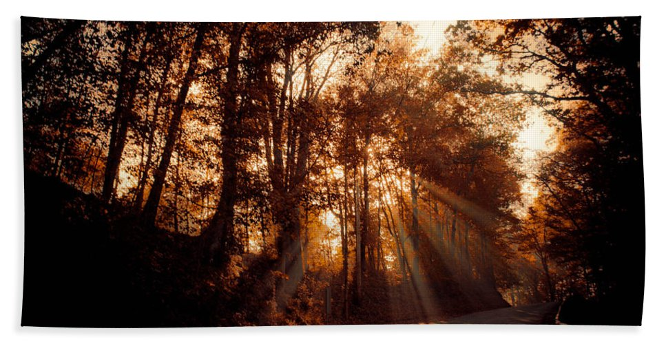Ray Bath Towel featuring the photograph A New Dawn by Trish Tritz