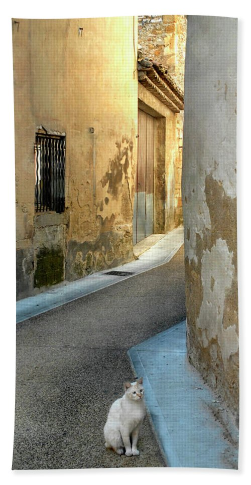 Cat Bath Sheet featuring the photograph A Sidestreet In Provence by Dave Mills