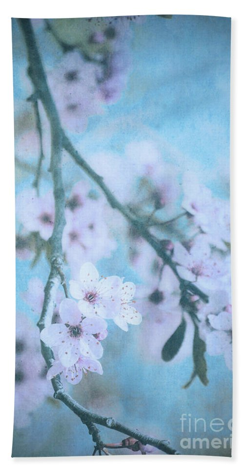 Blossoms Bath Sheet featuring the photograph A Subtle Spring by Tara Turner