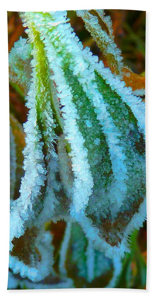 Frost Hand Towel featuring the photograph A White Trimmed Coat by Steve Taylor