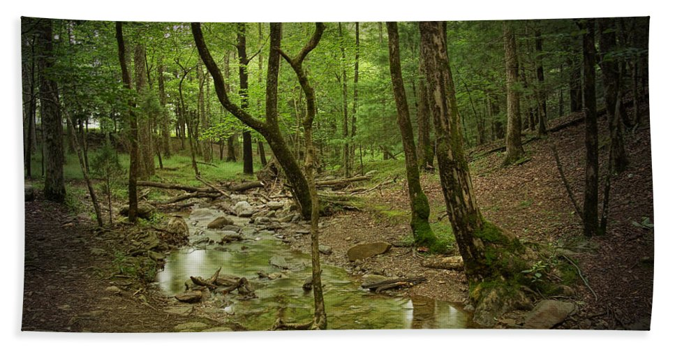 Art Bath Sheet featuring the photograph A Woodland Stream In Cades Cove No.472 by Randall Nyhof
