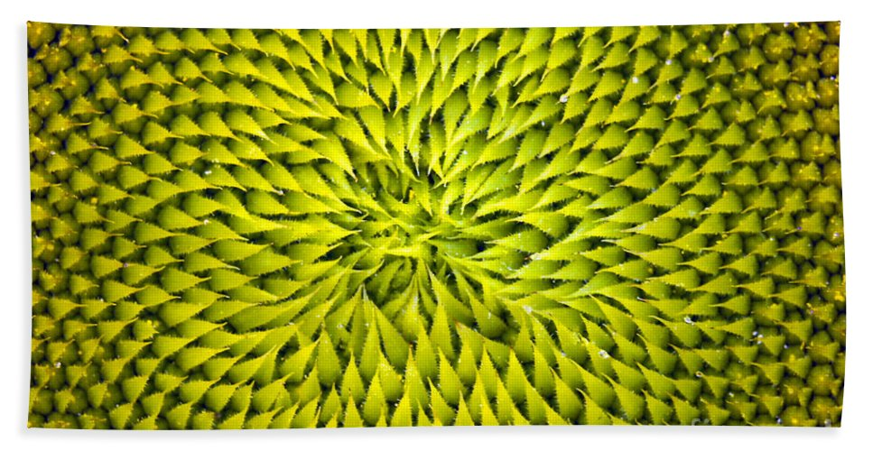 Sunflower Hand Towel featuring the photograph Abstract Sunflower Pattern by Benanne Stiens