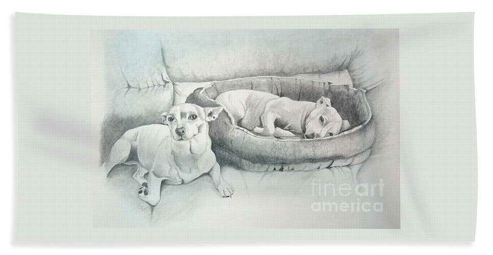 Chihuahua Dogs Bath Sheet featuring the drawing Adrian's Kids by Joette Snyder