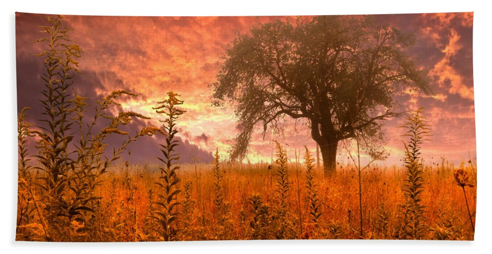 Andrews Bath Towel featuring the photograph Aflame by Debra and Dave Vanderlaan